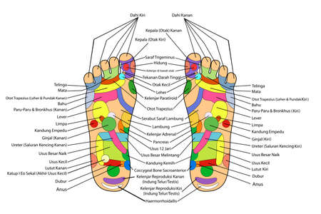 reflexology: Traditional alternative heal, Acupuncture - Foot Scheme (Indonesia Language)