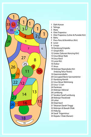 Traditional alternative heal, Acupuncture - Foot Scheme (Indonesia Language)