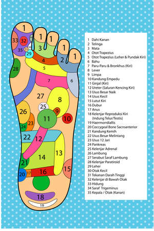 Traditional alternative heal, Acupuncture - Foot Scheme (Indonesia Language) photo