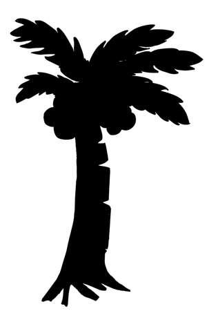 translucent: Coconut Tree
