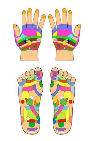 chiropody: Traditional alternative heal, Acupuncture - Foot and hand Scheme at white background Stock Photo