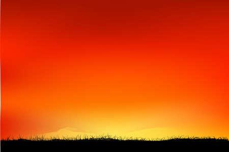 Silhouette Grassland when Sunrise  Sunset