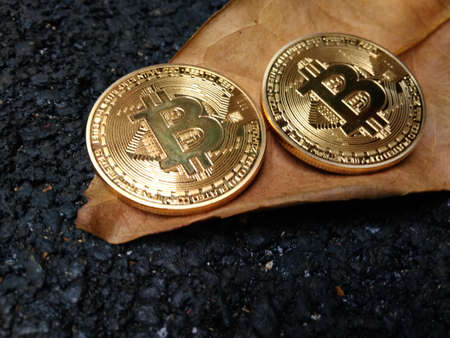 two pieces of bitcoin at withered leaf at black asphalt road Stock Photo