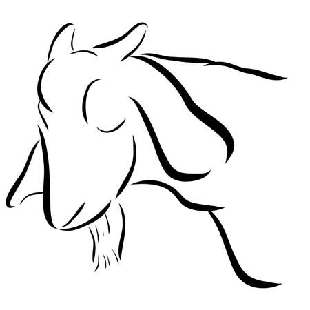 Simple Outline Sketch of Goat Head, Isolated on White