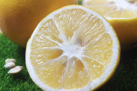 Close Up two Lemon and stainless steel sharp knife at plastic artificial green grass