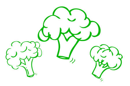 vector hand draw sketch, three brocoli