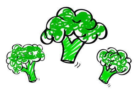 vector hand draw sketch, three brocoli  Stockfoto