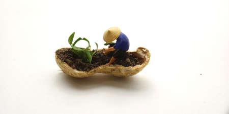 Conceptual Illustration, Keep Struggle, Mini Figure man farming at limited area, peanut skin, with white negative space Stockfoto
