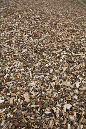 Road made of wood chippings Stock Photo
