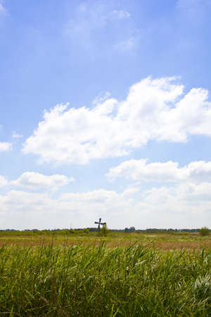 Beautiful Dutch landscape with high grass and little mill with blue sky Stock Photo - 9667619