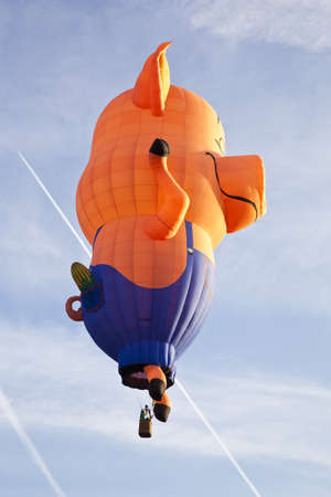 BARNEVELD, THE NETHERLANDS - 17 AUGUST 2012: Colorful pig balloon taking off at international balloon festival Ballonfiesta in Barneveld on August 17 in Barneveld, The Netherlands