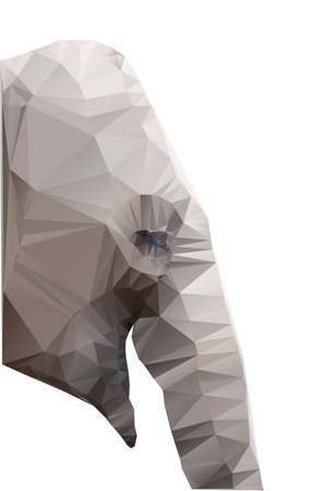 polygons: Polygonal illustration of head of elephant isolated on white background
