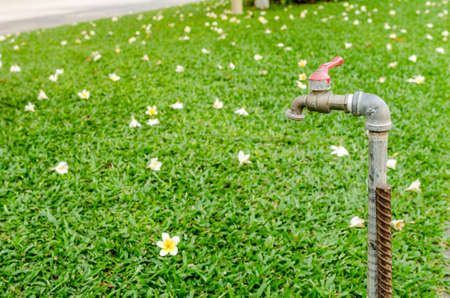 water tap: A old rusty water tap in garden
