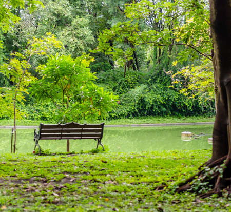 lonely bench and lake view of garden in the Thai capitals city centre photo