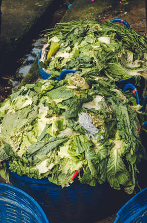 table scraps: Organic waste from the fresh market Stock Photo