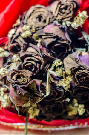 lost love: Dry rose signifies lost love, bad valentine bad relationship