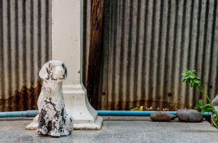 piso piedra: Viejo y roto todos los perros en el suelo de piedra