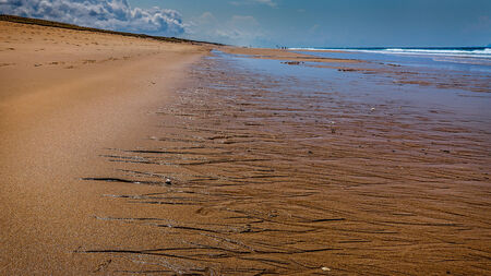 landes: Low tide in the Landes