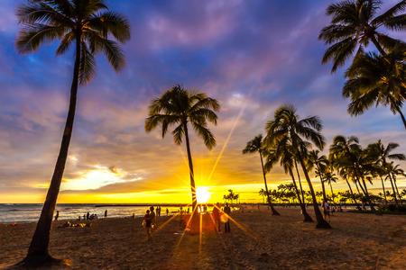 Shot at paradisiac islands of Hawaii 版權商用圖片