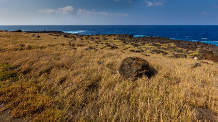 filed: Lava filed with big stone of first plan and ocean on background