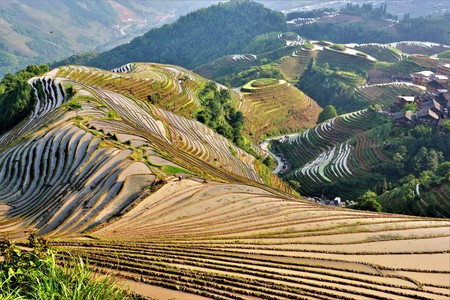 Amazing view of the rice fields in Guillin China
