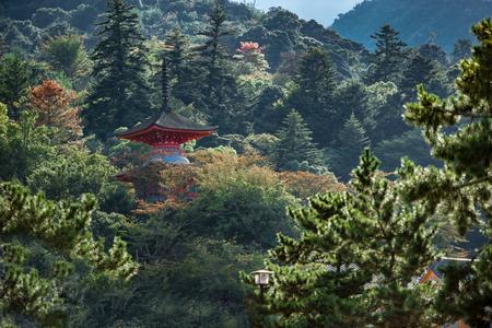 녹색 숲 사이의 나 시마 예술 섬의 아름다운 사원 스톡 콘텐츠
