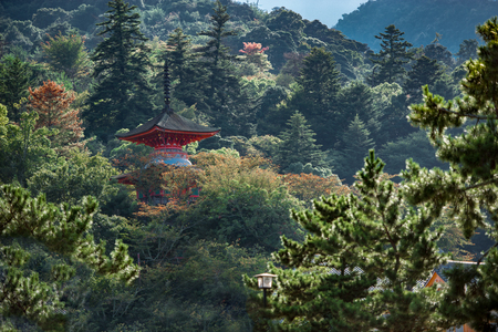 Beautiful temple in the art island of naoshima between a green forest