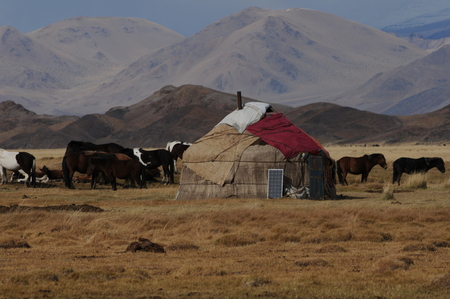 yurt the home for the nomads people  in the landscapes of mongolia