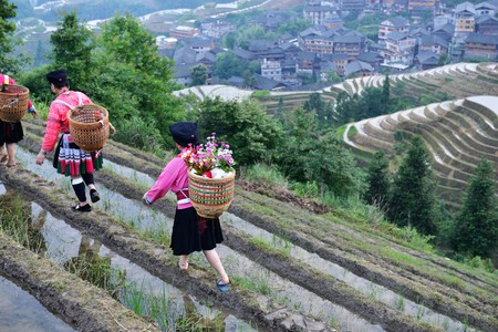 Beautiful view of the rice terraces of Guillin district in China, While the sun is rising and reflecting on the water and local women dressed with traditional costumes walk along the terrace Reklamní fotografie