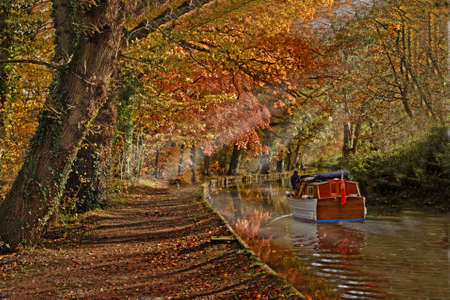 Autumn colour along by the Shropshire Union Canal, England.