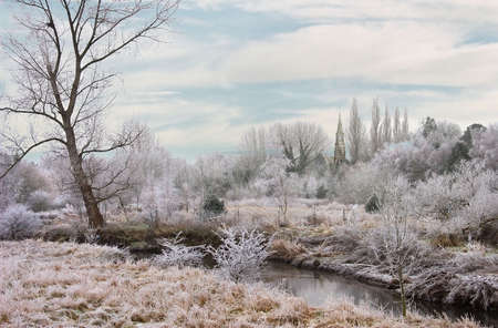 A winter frost at the river Trent in Staffordshire, England.