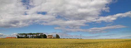 lothian: Arable farmland in East Lothian Scottland. Stock Photo