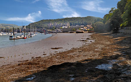 moorings: The Conwy estuary at low tide, with the 13th century castle beyond the town. Stock Photo