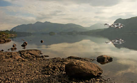 早朝の白鳥平和ダーウェント水カンブリア、イングランドの湖水地方国立公園の上空を飛ぶ。