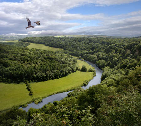 yat: The river Wye at Symonds Yat defines the border between Gloucestershire and Herefordshire. Birds of Prey are often seen here.