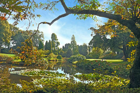 The gardens at Cholmondley in Cheshire, England are beaytifully landscaped, with many pools and other water features. Stock Photo
