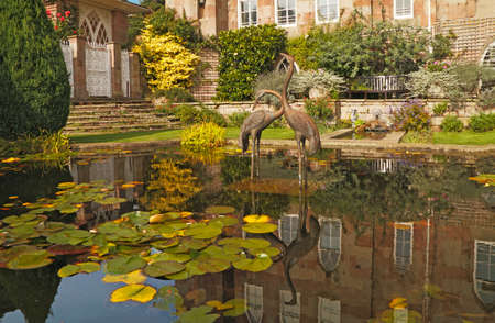 waterlillies: The pool close to the castle at Chomondley has a decorative sculpture of two herons.