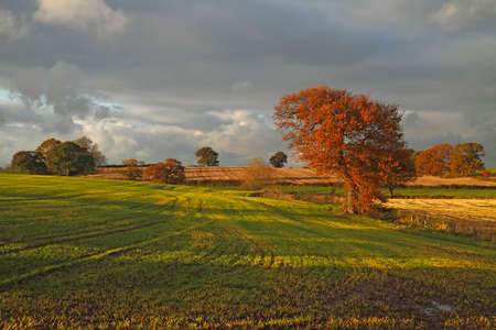 The countryside near the Staffordshire, Cheshire border in England, although not dramatic is one of the most attractive areas anywhere.