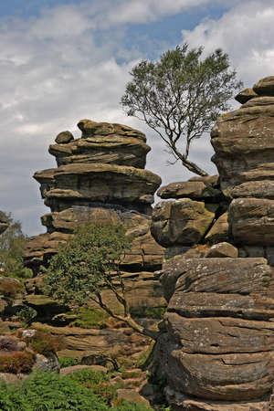 eiszeit: Brimham Rocks in Yorkshire, England aus M�hlstein K�rnung zusammengesetzt und wurden von Erosion w�hrend der letzten Eiszeit sulptured. Lizenzfreie Bilder