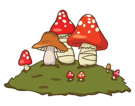edible: Group of edible and poisonous mushrooms. Vector illustration. Fall colors.
