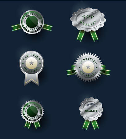 shiny argent: Set of classic silver badges. Certified quality emblems. Labels collection.