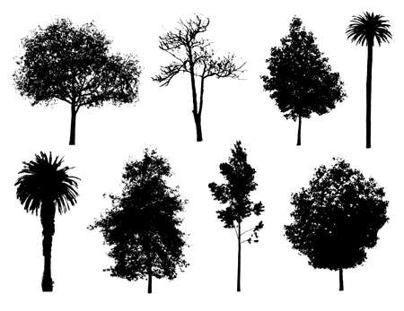 pine boughs: Set of tree silhouettes.