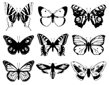 papillon dessin: Ensemble de papillons silhouette avec les ailes ouvertes. Illustration