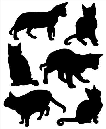 black cat silhouette: Set of cat silhouettes. Illustration