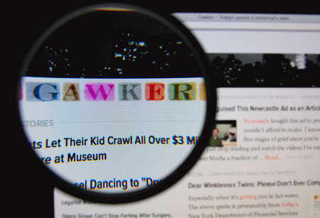 american media: LISBON, PORTUGAL - FEBRUARY 3, 2014: Photo of Gawker homepage on a monitor screen through a magnifying glass.