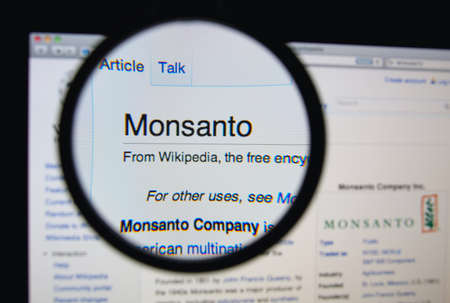 LISBON, PORTUGAL - MARCH 13, 2014: Photo of Wikipedia article page about Monsanto on a monitor screen through a magnifying glass.
