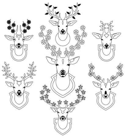 taxidermy: Set of decorative deer heads trophies.