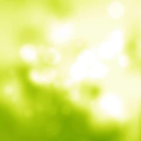 Sonniger abstrakter grüner weicher Naturhintergrund. Frische Natur. Natur verschwommener heller abstrakter Hintergrund / natürlicher Bokeh-Hintergrund im Freien, verschwommener Waldhintergrund