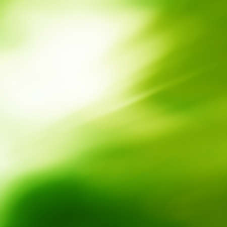 Sunny abstract green soft nature background. Fresh nature.