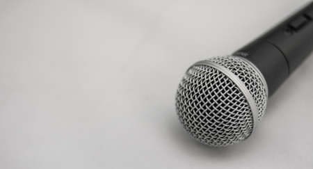 Dynamic microphone capsule protection mesh for voice and instrument